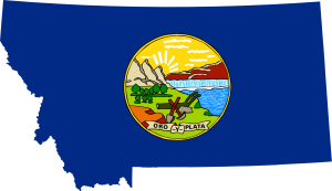 Montana Marriage Laws